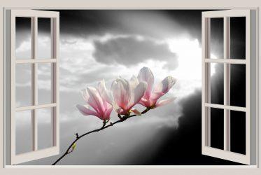 Prozor-soba-pogled-magnolija