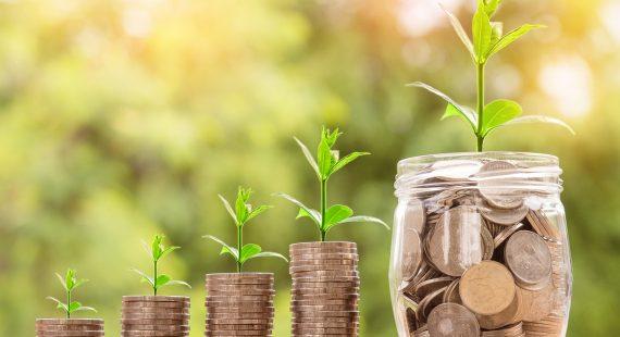 Kako privuci novac novčići u rastu